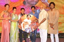 Celebs @ 'Doosukeltha' Movie Audio Launch