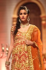 Aditi Rao Hydari, Sophie Chaudhary, Esha Gupta and Others @ Amby Valley India Bridal Fashion Week 2013 Day 5