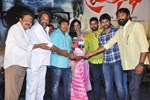Nani and Others @ Nara Rohit's 'Pratinidhi' Movie Platinum Disc Function